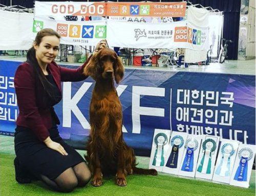 Наши в Корее!!!
